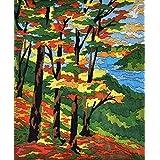 Anchor Stitch Kit - Amazing Autumn