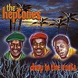 Songtexte von The Heptones - Deep in the Roots