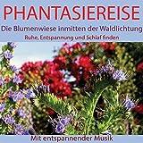 Phantasiereise: Die Blumenwiese inmitten der Waldlichtung (Ruhe, Entspannung und Schlaf finden. Mit entspannender Musik)
