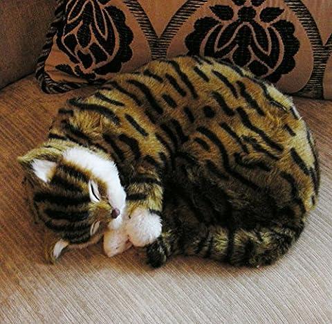 Tigger | Realistic Sleeping Life Size Cat | Brown Tabby