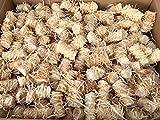10 Kg Zündwolli Anzünder aus Holzwolle und Wachs Ofenanzünder Kaminanzünder Grillanzünder Brennholzanzünder Kaminholzanzünder Holzanzünder