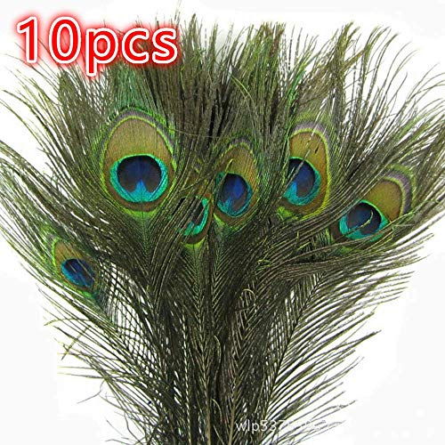 10pcs Real Natural Peacock Tail Eyes Feathers Arts and Crafts Home Decorations DIY