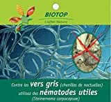 Nematodes Sc Anti vers gris, doryphore et courtilières - 25 millions