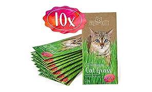 PRETTY KITTY 10 Sachets de Graines d'herbe Chat PrettyKitty ; Paquet DE 10 Sachets de Semence Environ 100 Pots