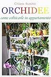 Orchidee. Come coltivarle in appartamento