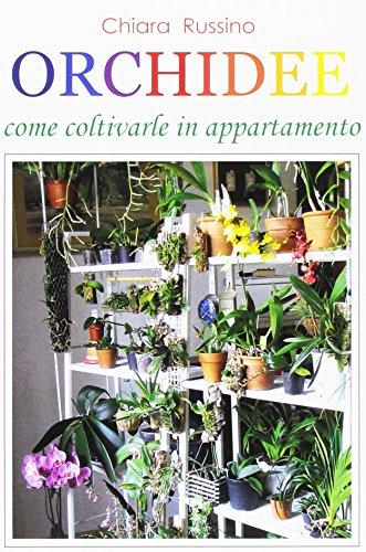 orchidee-come-coltivarle-in-appartamento
