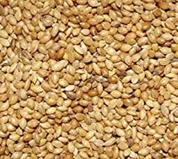 Amijivdaya Yellow Millet Bird Food for Small Birds (5kg)