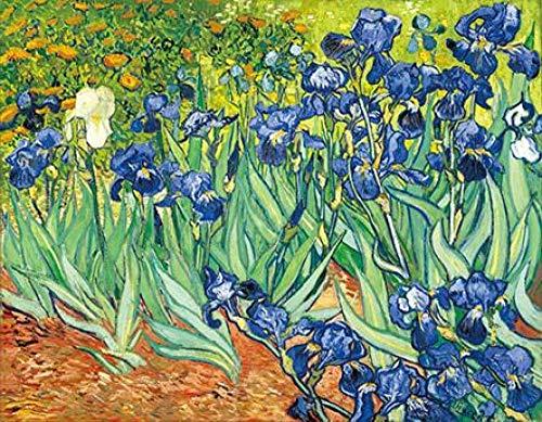 Renzhen Van Gogh Iris Flores Pinturas Reproducciones
