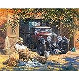Rawuin No-Framed DIY Malen Nach Zahlen Ölgemälde Auf Leinwand Der Schlafende Alte Mann Und Auto (# 058)