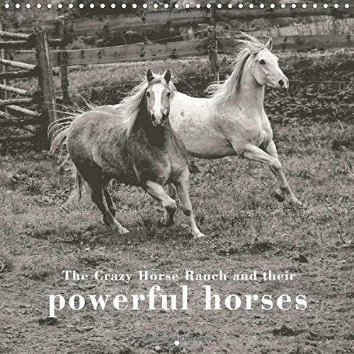 The Crazy Horse Ranch and their powerful horses (Wall Calendar 2017 300 × 300 mm Square) (Calvendo Animals) Crazy Horse Ranch