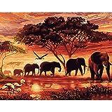 [mit Holzrahmen]Malen nach Zahlen Neuerscheinungen Neuheiten-DIY ölgemälde, Malen nach Zahlen Kits-Der Schmetterlings-Afrikanischer Elefant 16x20inch