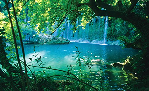 cascata-laguna-tropicale-foto-carta-da-parati-foto-carta-da-parati-murale-tessuto-non-tessuto-multic