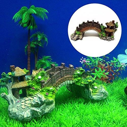 Fond Aquarium Tank