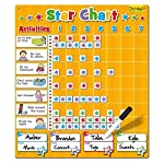 Large Magnetic Progress Star Chart 3+