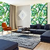 murando - Fototapete tropische Blätter Monstera 150x280 cm - Vlies Tapete - Moderne Wanddeko - Design Tapete - Wandtapete - Wand Dekoration – weiß grün b-B-0295-am-a