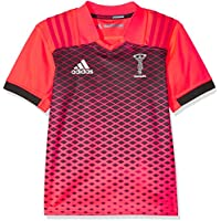 adidas Kinder Harlequins Trainingstrikot