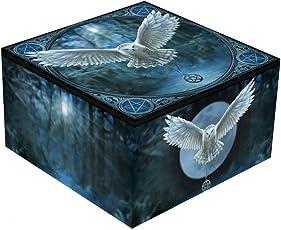 Wecken Sie Ihre Magie - Snowy Mirror Box Blau - Fantasy - Nemesis Now