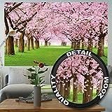 great-art Fototapete Kirschblüten Wandbild Dekoration Blumen Frühling Garten Pflanzen Walt Park Natur Cherry Tree Kirschblütenbaum Allee | Foto-Tapete Wandtapete Fotoposter Wanddeko by (210x140 cm)
