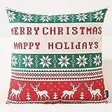 ARAYACY Baumwollsofakissen-Mittagspausekissen des Paares des Weihnachtsgeschenkkarikaturkissens Nettes,E