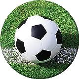Creative Converting Pappteller, 8 Stück, Motiv: Fußballfans, robust, 22 cm, mehrfarbig