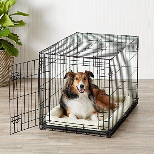 ~ AmazonBasics – Gabbia in metallo richiudibile, per cani, Portiera Singola – Medio lista dei prezzi