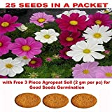 Cosmos Flower Seeds with Free 3 Piece Agropeat Soil for Good Seeds Germination by Kraft Seeds
