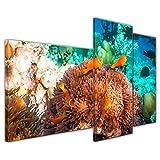 Kunstdruck - Unterwasserwelt IV - 130x80 cm 3 teilig - Bilder als Leinwanddruck - Wandbild von Bilderdepot24 - Tierwelten - Leben im Meer - Meeresbewohner - Korallenriff mit Fischen und Schildkröte