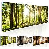 Cuadro en Lienzo 135x45 cm - 3 tres colores a elegir - 1 Partes - Formato Grande - Impresion en calidad fotografica - Cuadro en lienzo - Naturaleza bosque Paisaje c-B-0077-b-b 135x45 cm B&D XXL