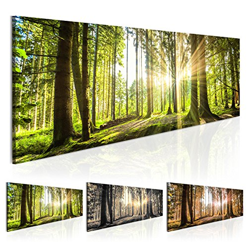 Bilder 135x45cm ! Echtes XXL Panoramabild - Fertig Aufgespannt – TOP – Vlies Leinwand - 1 Teilig - Wand Bild - Kunstdruck - Wandbild - Natur Wald Landschaft c-B-0077-b-b 135x45 cm B&D XXL