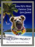 Front cover for the book The Poppy Project by Fiona Ingram