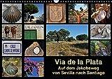 Via de la Plata - auf dem Jakobsweg von Sevilla nach Santiago (Wandkalender 2016 DIN A3 quer): Pilgern auf einer alten Römerstraße - 1000 km zu Fuß ... (Monatskalender, 14 Seiten) (CALVENDO Natur) - Rina B.