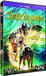Chair de poule [DVD + Copie digitale]
