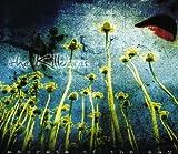 Songtexte von The Killdares - Secrets of the Day