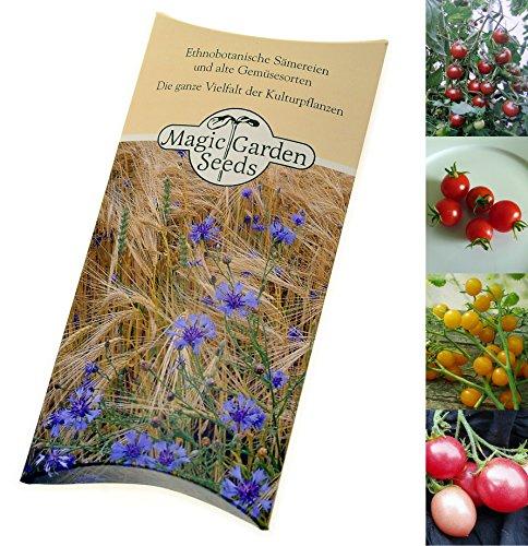 Saatgut Set: 'Süße Cocktailtomaten', 4 leckere, aromatische Tomatensorten als Samen für die Anzucht in schöner Geschenkverpackung