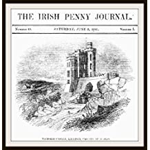 The Irish Penny Journal: Vol. 1 - No. 49 - June 5, 1841 (English Edition)