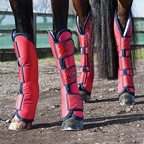 Weatherbeeta breit Tab lang Horse Transportgamaschen-rot/marineblau Pony