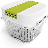 Rotho Fresh petite boîte de 1,6 l avec ventilation, Plastique (PP) sans BPA, blanc/vert, 1,6l (15,5 x 15,5 x 12,3 cm)