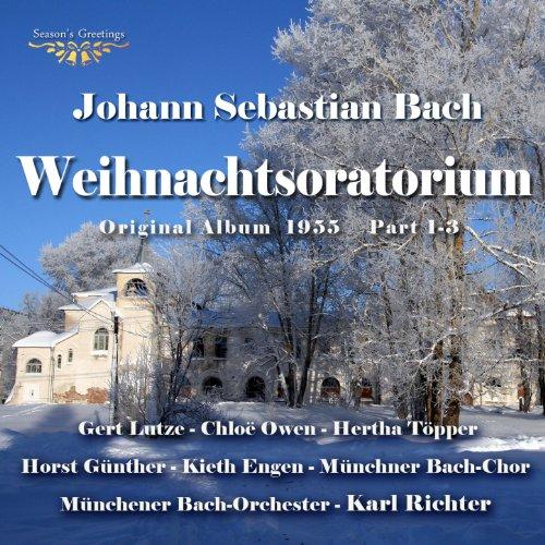 Christmas Oratorio, BWV 248: Pt. 3 - Herr, Dein Mitleid -