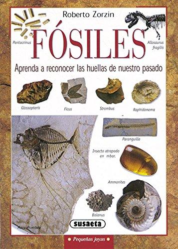 Fosiles (Pequeñas Joyas) por Susaeta Ediciones S A