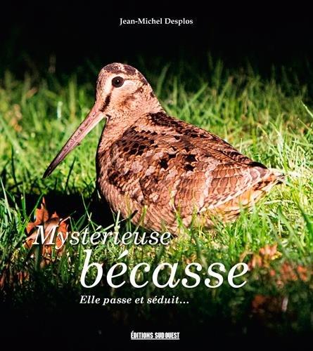 MYSTERIEUSE BECASSE par DESPLOS JEAN MICHEL