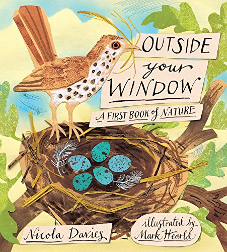 Outside your window: a first book of nature Nicola Davies
