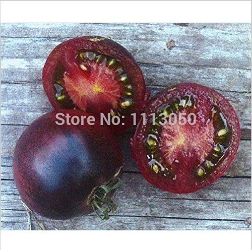 100pcs Tomatensamen Lila Tomate, Gemüse, Obst Lycopersicon esculentum Bonsai Pflanzen Samen für Heim & Garten
