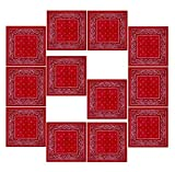 BOOLAVARD 100% Cotton 1pcs, 6pcs or 12pcs Pack Bandanas with Original Paisley Pattern Colour of Choice Headwear / Hair (12pcs)