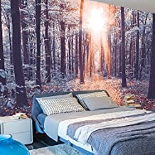 murando - Fotomural 400x280 cm - Papel tejido-no tejido - Papel pintado - naturaleza paisaje bosque c-B-0076-a-c