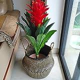 cheerfulus Nordic Seegras Bauch Korb faltbar geflochtener Wäschekorb handgefertigt natur Blumentopf Übertopf Stroh Korb, Schwarz, M