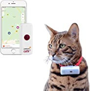 Weenect Cats 2 - Le plus petit collier GPS pour chat au monde