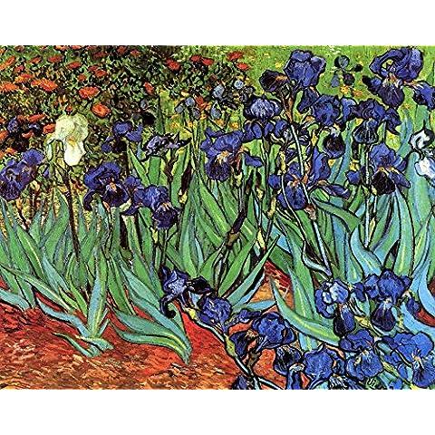 L'uscita Museum, Poster, formato A3, colore: iris