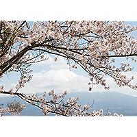 Amazon Fr Cerisier Du Japon Bricolage