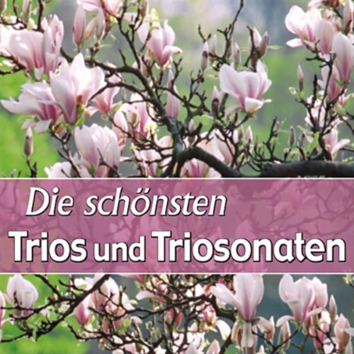 jan-stamitz-trio-no-1-in-g-major-moderato