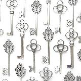 Makhry Confezione Mista di 30 Chiavi Vintage Skeleton in Argento Antico Confezione da 30 Chiavi (Argento Antico)